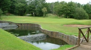 Aberdelghy Golf Club Picture