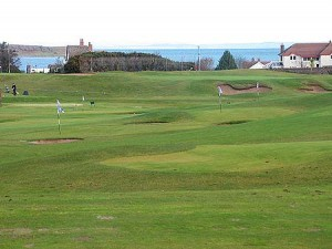 Donaghadee Golf Club Picture