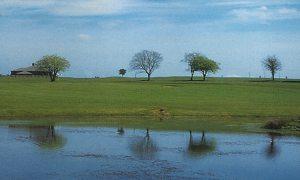 Foyle Golf Club Picture