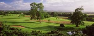 Radisson Roe Park Golf Club Picture