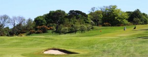 Royal Belfast Golf Club Picture